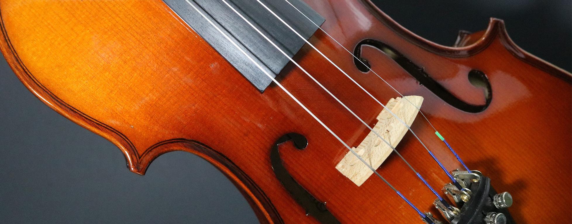Violon, violoncelle… Les instruments à cordes frottées